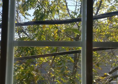 House Inspection Of a Window And Service Wires